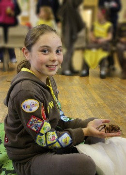 Elstead Brownies